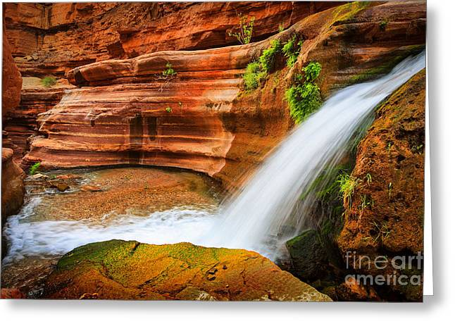 Picturesque Greeting Cards - Little Deer Creek Fall Greeting Card by Inge Johnsson
