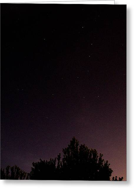 Little Dipper Greeting Cards - Little Dipper Greeting Card by Anthony Johnson