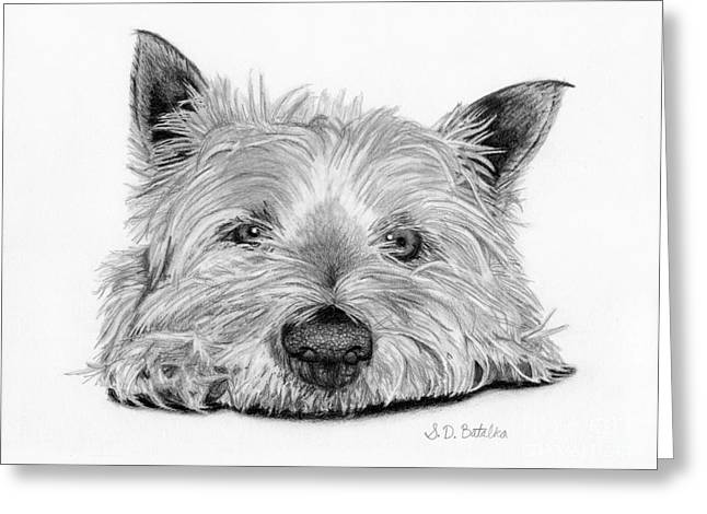 Toy Dog Drawings Greeting Cards - Little Dog Greeting Card by Sarah Batalka
