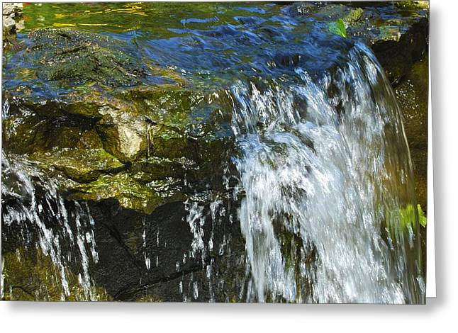Nashville Tennessee Greeting Cards - Little Falls Greeting Card by Charlie Brock