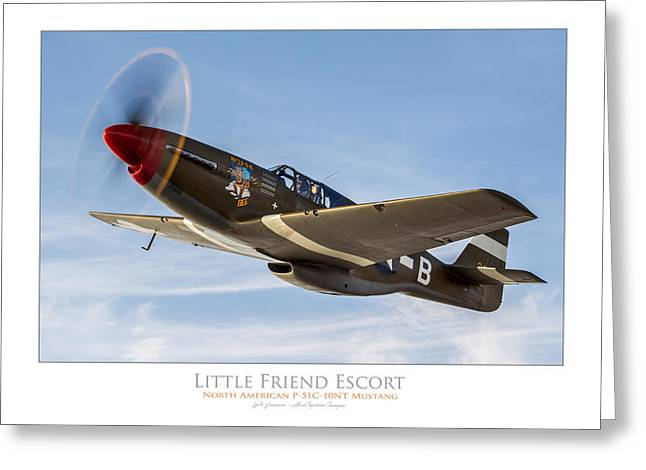 P51 Photographs Greeting Cards - Little Friend Escort Greeting Card by Lyle Jansma