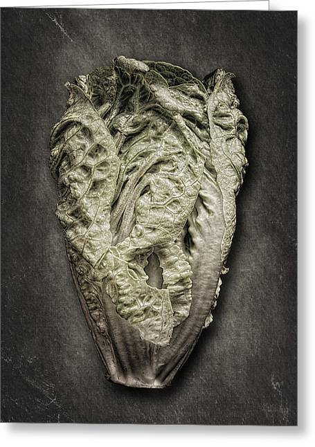 Grey Fine Art Greeting Cards - Little Gem Lettuce Greeting Card by Tom Mc Nemar
