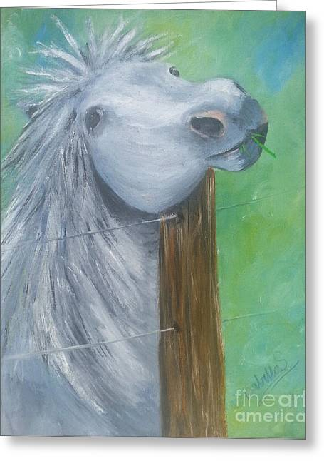 Gray Hair Greeting Cards - Little Grey Has An Itch Greeting Card by Isabella F Abbie Shores LstAngel Arts