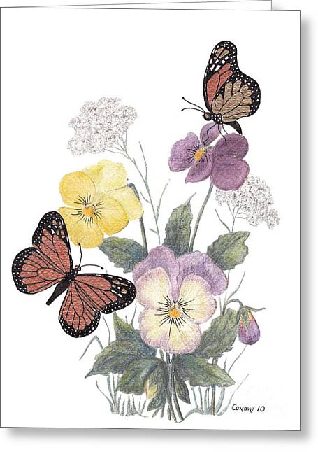 Johnny Jump Up Pansy Greeting Cards - Little Heartsease Greeting Card by Stanza Widen