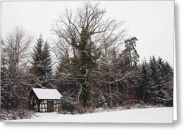 Winterly Forest Greeting Cards - Little hood and beautiful trees in winter Greeting Card by Matthias Hauser