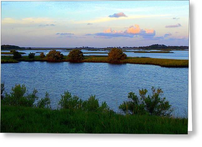 Cedar Key Greeting Cards - Little Islands 1 Greeting Card by Sheri McLeroy