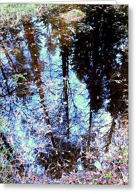 Social Situations Greeting Cards - Little Mirror In The Woods Greeting Card by Hilde Widerberg