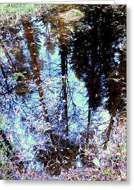 Little Mirror In The Woods Show Me What You See Greeting Card by Hilde Widerberg