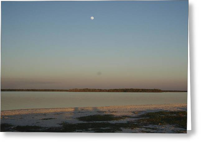 Little Moon Greeting Card by Robert Nickologianis