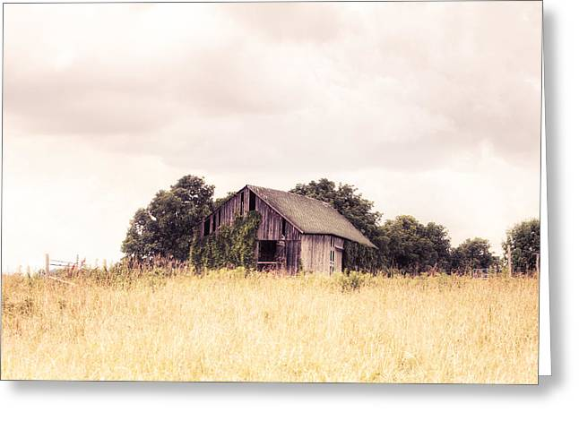 Farm Structure Greeting Cards - Little Old Barn in a Field - Landscape  Greeting Card by Gary Heller