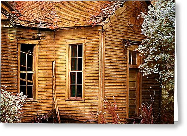 Little Old School House II Greeting Card by Julie Dant
