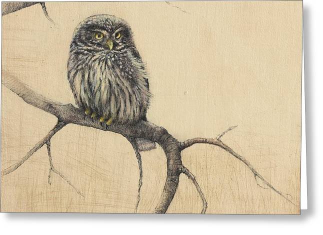 Mixed Media Print Mixed Media Greeting Cards - Little Owl Greeting Card by Lori  McNee