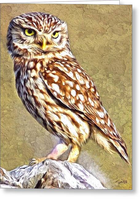 New Britain Digital Art Greeting Cards - Little Owl Portrait Greeting Card by Scott Wallace