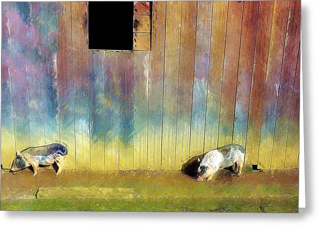 Piglets Greeting Cards - Little Piggies Greeting Card by Carl Rolfe