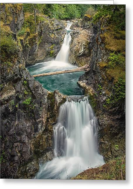 Little Qualicum Falls Greeting Card by Carrie Cole