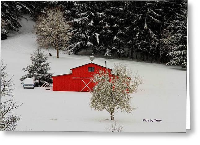 Snow Scene Landscape Pyrography Greeting Cards - Little red barn Greeting Card by Terry Matysak