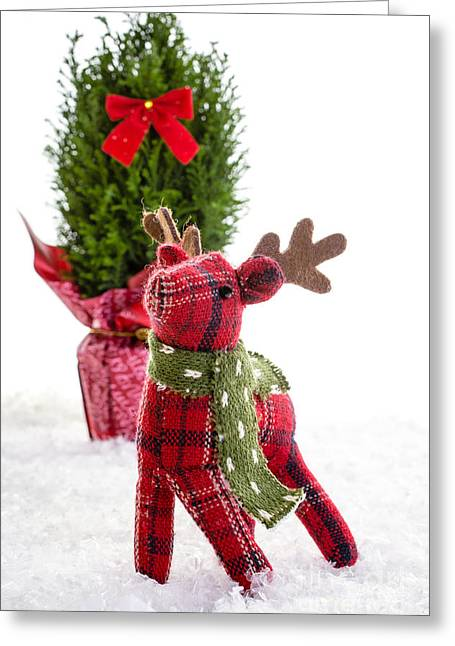 Yuletide Greeting Cards - Little Reindeer Christmas Card Greeting Card by Edward Fielding