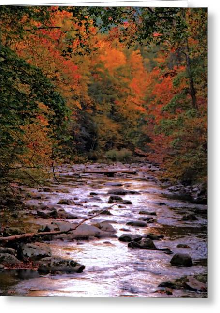 Gatlinburg Tennessee Greeting Cards - Little River In Autumn Greeting Card by Dan Sproul
