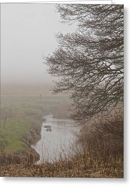 Subdued Greeting Cards - Little River Greeting Card by Odd Jeppesen