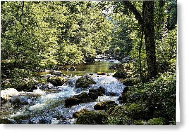 Gatlinburg Tennessee Greeting Cards - Little River Rapids Greeting Card by Cricket Hackmann