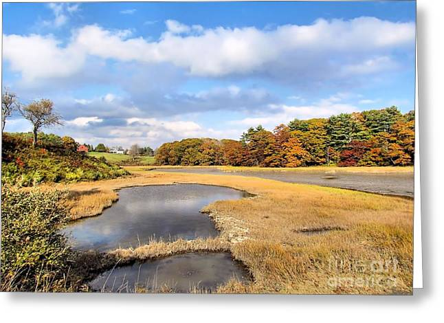 Maine Farms Greeting Cards - Little River Salt Marsh Greeting Card by Elizabeth Dow