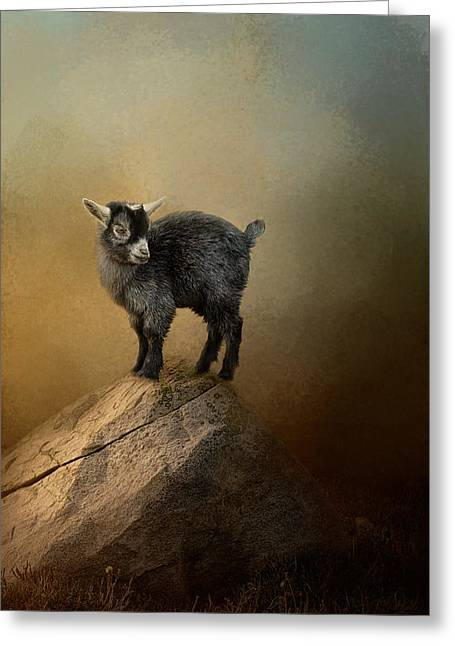 Goat Photographs Greeting Cards - Little Rock Climber Greeting Card by Jai Johnson