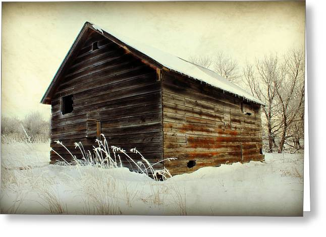 Barn Digital Art Greeting Cards - Little Shed Greeting Card by Julie Hamilton