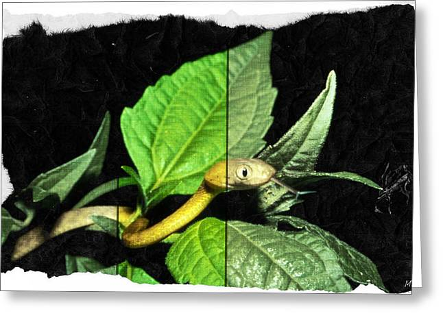 Gold Lime Green Greeting Cards - Little Snake In Mint Plant Greeting Card by Absinthe Art By Michelle LeAnn Scott