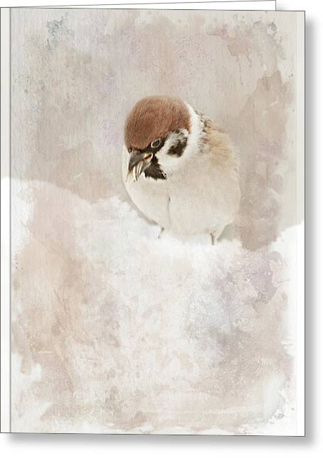 Little Sparrow Greeting Card by Heike Hultsch