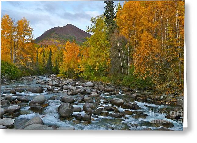 Rush-bed Greeting Cards - Little Susitna River Greeting Card by Scott Henry