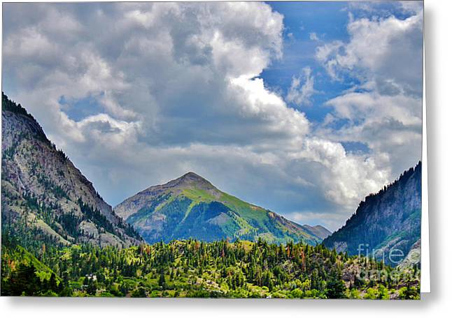Grazing Snow Greeting Cards - Little Switzerland of America Ouray Colorado Summertime Greeting Card by Janice Rae Pariza