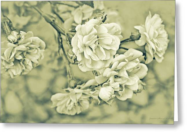 Moss Green Greeting Cards - Little Tea Roses Celadon Green Greeting Card by Jennie Marie Schell