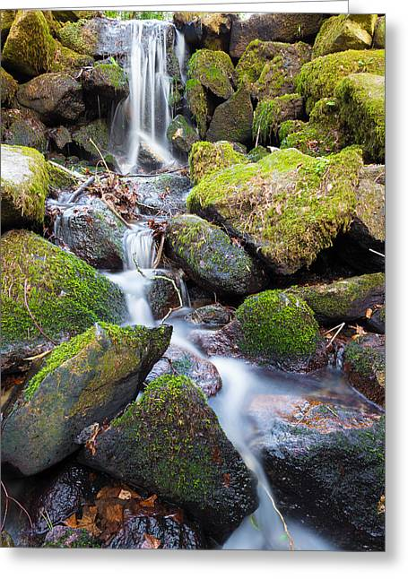 Pouring Greeting Cards - Little Waterfall in Marlay Park Greeting Card by Semmick Photo