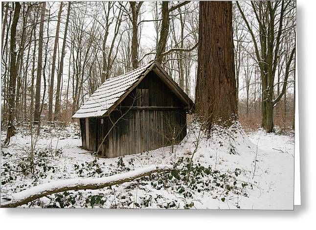 Little Wooden Hood In The Forest In Winter Greeting Card by Matthias Hauser