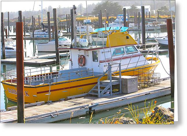 Boats In Harbor Greeting Cards - Little Yellow Boat Greeting Card by Lisa Billingsley