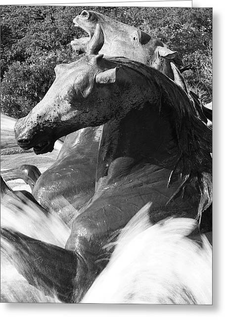 Texas Horse Greeting Cards - Littlefield Fountain Greeting Card by Mark Weaver
