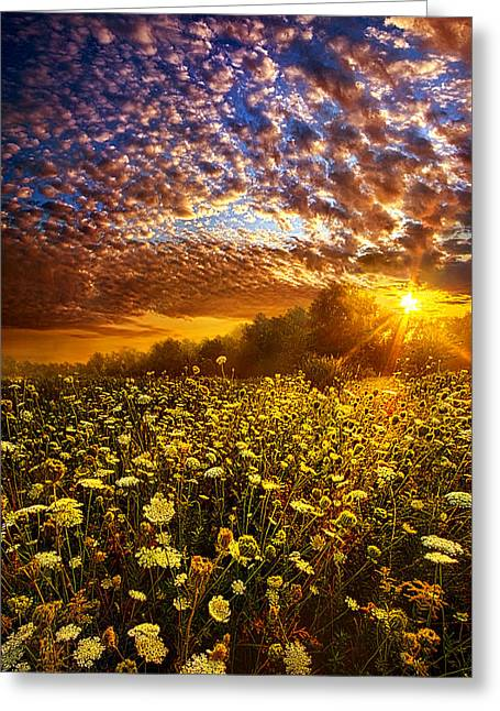 Love Laces Greeting Cards - Live Every Moment Greeting Card by Phil Koch
