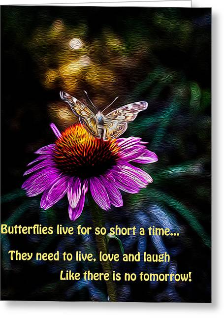 Lepidopterist Greeting Cards - Live love and laugh like there is no tommorow Greeting Card by Jeff Folger