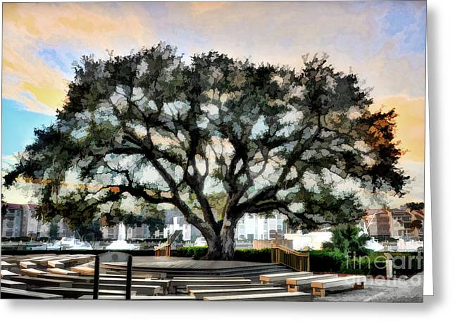 Live Oak Artistic Trendering Greeting Card by Dan Friend