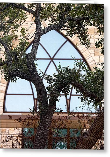 Native Stone Greeting Cards - Live Oak in Front of Church Window Greeting Card by Linda Phelps