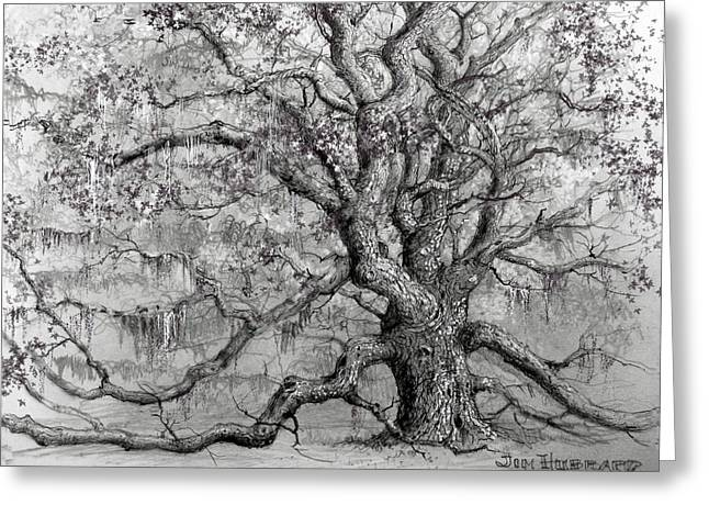 Jim Hubbard Greeting Cards - Live Oak Greeting Card by Jim Hubbard