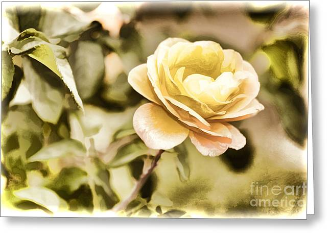 Live Art Photographs Greeting Cards - Live Yellow Rose flower Painting in Color 3229.02 Greeting Card by M K  Miller