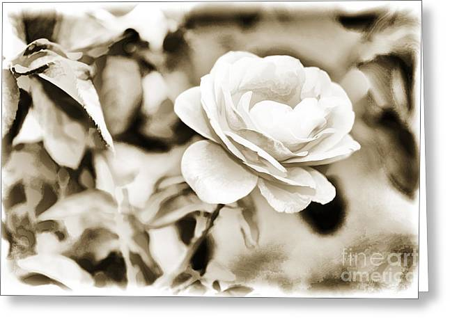 Live Art Photographs Greeting Cards - Live Yellow Rose flower Painting in Sepia 3229.01 Greeting Card by M K  Miller