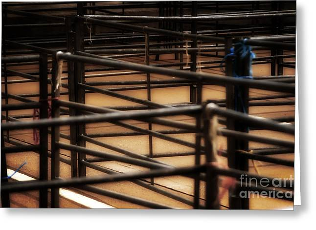 Livestock Market - In The Peak District In Great Britain Greeting Card by Doc Braham