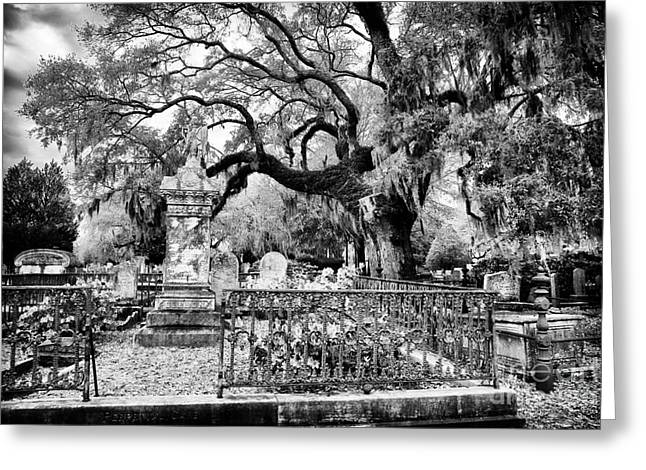 Historic Cemetery Greeting Cards - Living Cemetery Greeting Card by John Rizzuto
