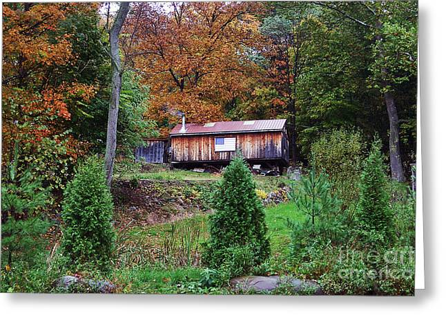 Photos Of Autumn Greeting Cards - Living in America Greeting Card by John Rizzuto