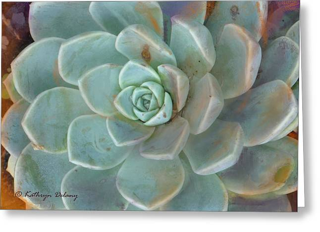 Hens And Chicks Photography Greeting Cards - Living Jade Greeting Card by Kathryn Delany