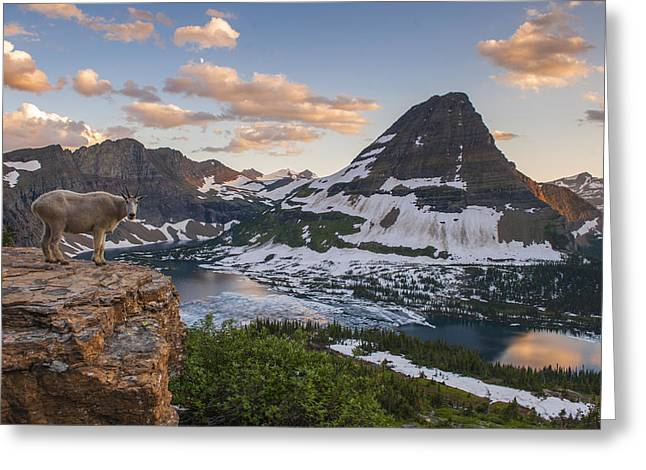 Glacier National Park Greeting Cards - Living on the Edge Greeting Card by Joseph Rossbach