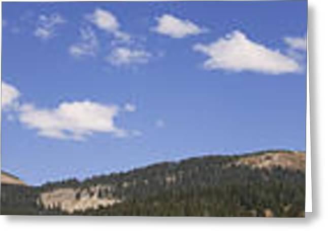 Woman Head Greeting Cards - Lizard Head Wilderness Panorama Greeting Card by Janice Rae Pariza