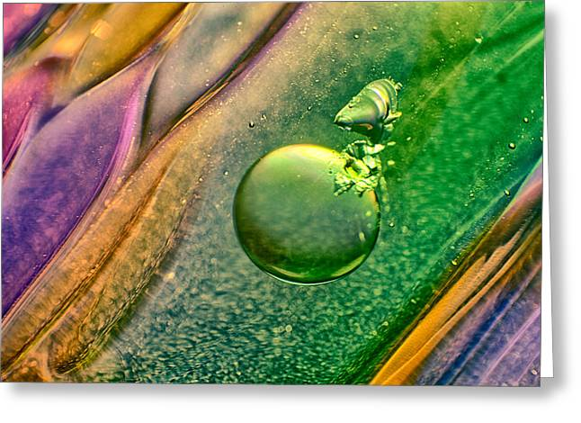 Floating Glass Art Greeting Cards - Lizard on a Rock Greeting Card by Omaste Witkowski